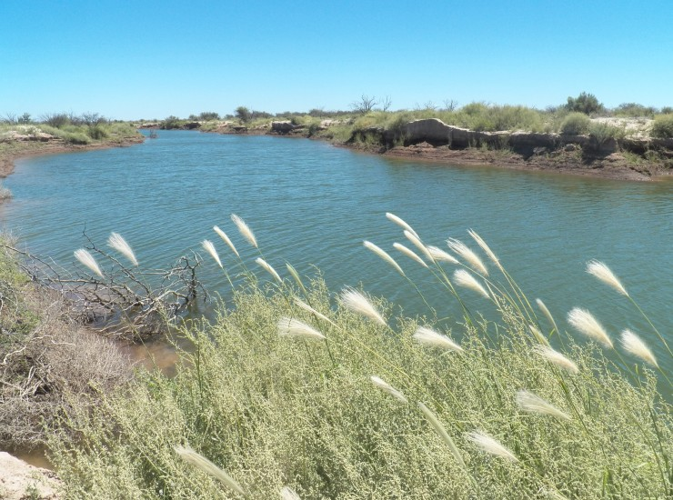 laguna-guanacache-mendoza-uno-de-los-proyectos-de-reabastecimiento-de-agua-que-coca-cola-realiza-en-argentina