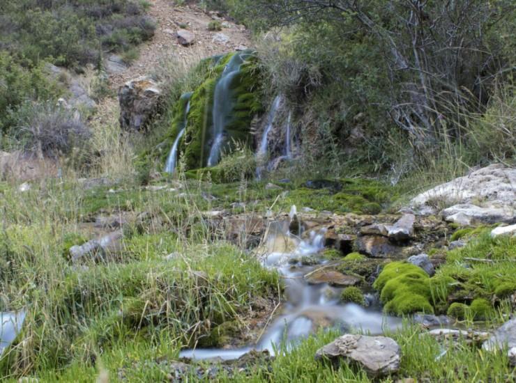 01 Humedal de la Reserva de Villavicencio
